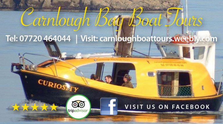 Carnlough-Tours-Advert-90x50